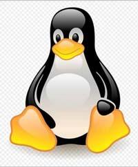 linux-penguin