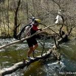 Forsiranje reke Đetinje