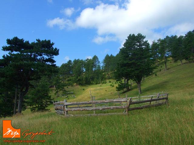 Murtenica Mountain Information