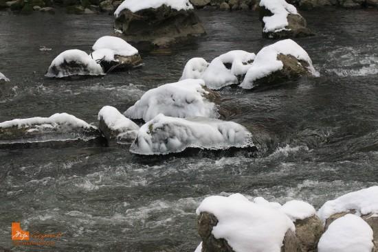 zaledjena-reka-predrag-supurovic